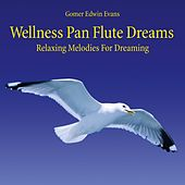 Play & Download Wellness Pan Flute Dreams: Relaxing Melodies for Dreaming by Gomer Edwin Evans | Napster