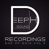 Deephsound Recordings - End of 2014 Vol. 2 by Various Artists