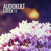 Audiokult Edition 11 von Various Artists