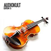 Audiokult Edition 15 von Various Artists