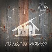 Play & Download Do Not Be Afraid by JJ Weeks Band | Napster