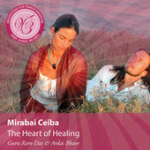 Meditations for Transformation: The Heart of Healing by Mirabai Ceiba
