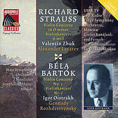 Strauss: Violin Concerto in D Minor - Bartok: Violin Concerto No. 2 by Various Artists