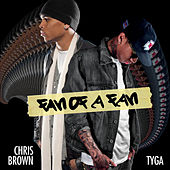 Fan of a Fan by Chris Brown