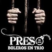 Preso de Mis Boleros en Trío by Various Artists