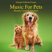 Play & Download Music for Pets: Beastly Good Relaxation by Gomer Edwin Evans | Napster