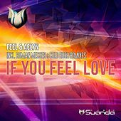 Play & Download If You Feel Love by Feel | Napster