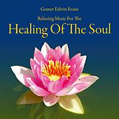Play & Download Healing of the Soul: Music for Recreation by Gomer Edwin Evans | Napster