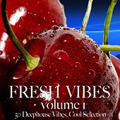 Play & Download Fresh Vibes, Vol. 1 by Various Artists | Napster