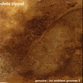 Play & Download Nu Ambient Grooves 2 by Chris Zippel | Napster