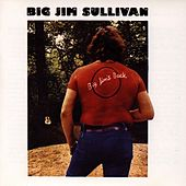 Big Jim S Back by Big Jim Sullivan