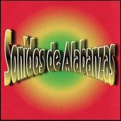 Play & Download Sonidos De Alabanzas by Vida | Napster