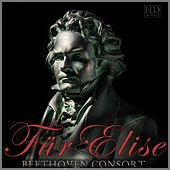 Play & Download Für Elise by Beethoven Consort | Napster