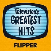 Flipper by Television's Greatest Hits Band