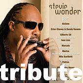 Play & Download Letra & Música: A Tribute To Stevie Wonder by Various Artists | Napster