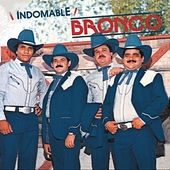 Play & Download Indomable by Bronco | Napster