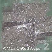 Collected Works, Volume Two by A Man Called Adam