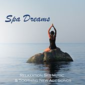 Play & Download Spa Dreams - Relaxation Spa Music & Soothing New Age Songs by Various Artists | Napster