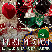 Puro México, Vol. 1 by Various Artists