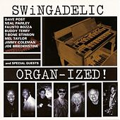 Play & Download Organized! by Swingadelic | Napster