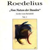 Vom Nutzen der Stunden - Lieder vom Steinfeld Vol. 1 by Roedelius