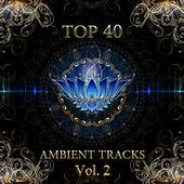 Play & Download Top 40 Ambient Tracks, Vol. 2 by Various Artists | Napster