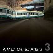 Collected Works Volume Three by A Man Called Adam
