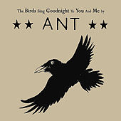 Play & Download The Birds Sing Goodnight to You and Me by Ant (comedy) | Napster