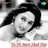 Tu Hi Meri Shab Hai by Various Artists