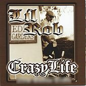 Play & Download Crazy Life by Lil Rob | Napster