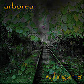 Play & Download Wayfaring Summer by Arborea | Napster
