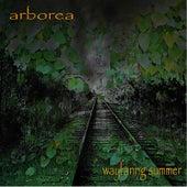 Wayfaring Summer by Arborea