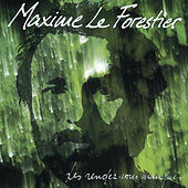 Play & Download Les Rendez-Vous Manqués by Maxime Le Forestier | Napster