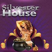 Silvester House by Various Artists