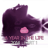 A Year in the Life of Heavenly Bodies 2014, Pt. 1 by Various Artists