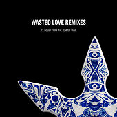 Wasted Love Remixes (feat. Dougy) by Steve Angello