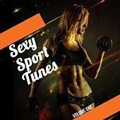 Sexy Sport Tunes, Vol. 1 (Over 2 Hours of Finest Electronic Beats for Body Workout) by Various Artists