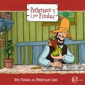 Folge 5: Wie Findus zu Pettersson kam und andere Geschichten by Pettersson und Findus
