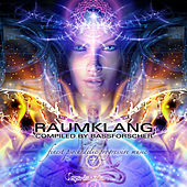 Play & Download Raumklang by Various Artists | Napster