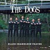 Play & Download Black Chameleon Prayer by The Dogs | Napster