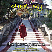 Play & Download The Journey Begins by Pure Joy | Napster