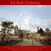 Play & Download Bach: Violin Concerto: Air On the G String - The Well -Tempered Clavier - Jesu, Joy of Man's Desiring / Pachelbel's Canon in D Major / Vivaldi: Concertos / Albinoni: Adagio in G Minor / Paradisi: Toccata / Fur Elise / Turkish March / Wedding March by Johann Sebastian Bach | Napster