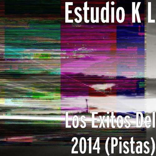Play & Download Los Exitos Del 2014 (Pistas) by Estudio K L | Napster