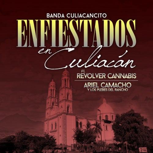 Play & Download Enfiestados En Culiacan by Banda Culiacancito | Napster