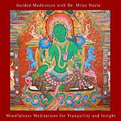 Play & Download Mindfulness Meditations for Tranquility and Insight by Guided Meditation | Napster