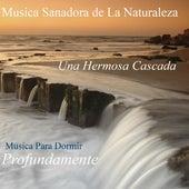 Play & Download Una Hermosa Cascada - Sonidos Sanadores De La Naturaleza by Musica Para Dormir Profundamente | Napster