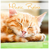 Play & Download Music Relax by Study Music | Napster