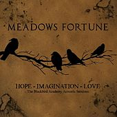 Play & Download Hope, Imagination, Love by Meadows Fortune | Napster
