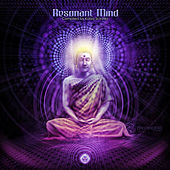 Resonant Mind by Various Artists