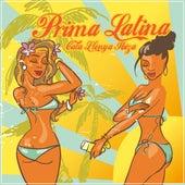 Prima Latina Cala Llenya Ibiza by Various Artists